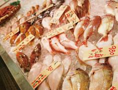 美味!日本海グルメ