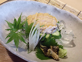 ちょこっとグレードアップ選べる鮮魚+コリコリな鮑のお刺身付